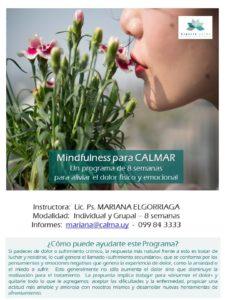 presentacion-programa-calmar